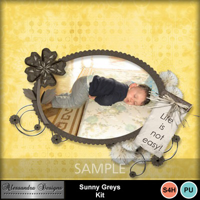 Sunny_greys-7