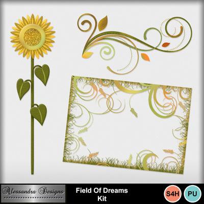 Field_of_dreams-4