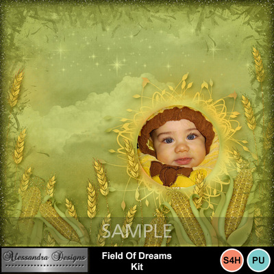 Field_of_dreams-10