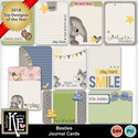 Besties_jourcds01_small