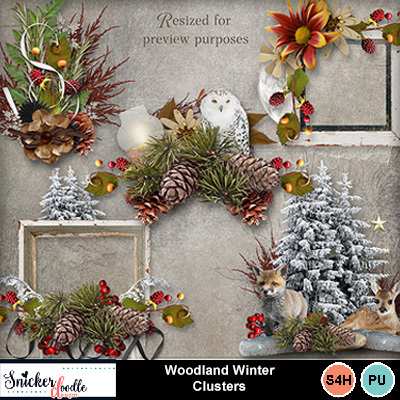 Woodland_winter_clusters-1