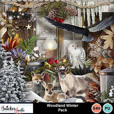 Woodland_winter-1