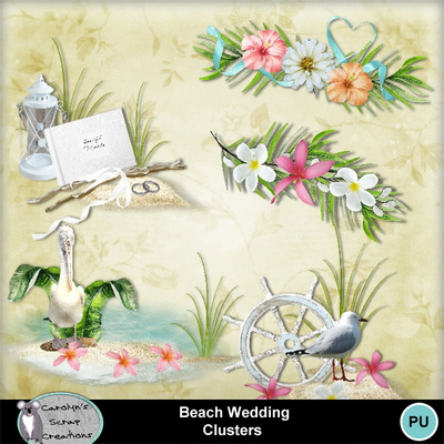 Csc_beach_wedding_wi_clusters