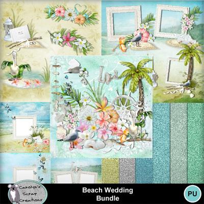 Csc_beach_wedding_bundle_wi