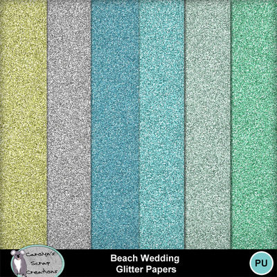 Csc_beach_wedding_wi_gp