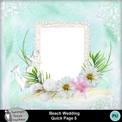 Csc_beach_wedding_qp_5
