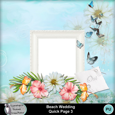 Csc_beach_wedding_qp_3