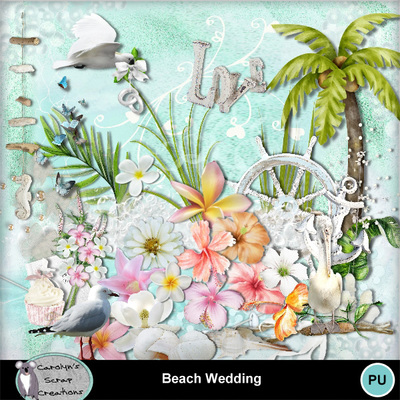 Csc_beach_wedding_wi_1