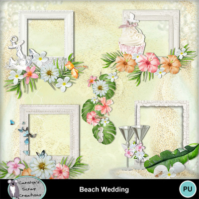 Csc_beach_wedding_wi_2