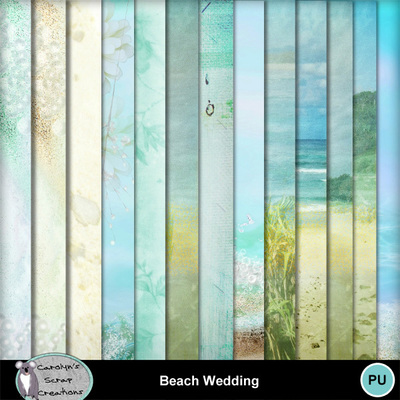 Csc_beach_wedding_wi_3
