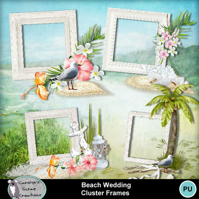 Csc_beach_wedding_wi_cf