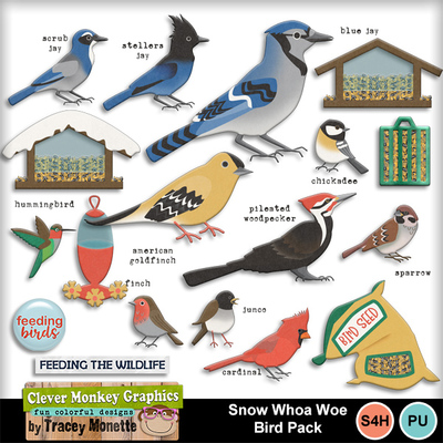 Cmg-snow-whoa-woe-bird-pack