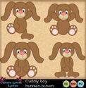Cuddly_boy_bunnies_brown_small