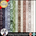 Adbdesigns_hs_comingtoamerica_shabbydamask_small