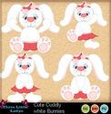 Cute_cuddly_white_bunnies_small