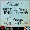 Alwaysbecuriouswa-001_small