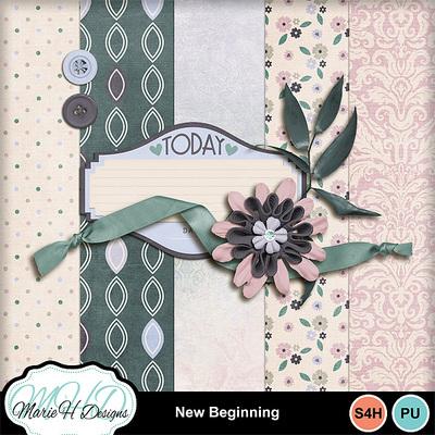 New_beginning_01