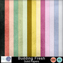 Pattyb_scraps_budding_fresh_solids_small