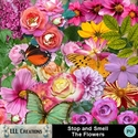 Stop_and_smell_the_flowers-01_small