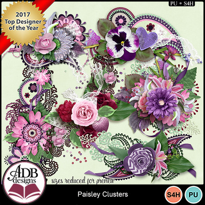 Paisley_clusters