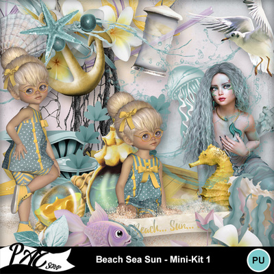 Patsscrap_beach_sea_sun_pv_mini_kit1