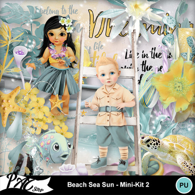 Patsscrap_beach_sea_sun_pv_mini_kit2