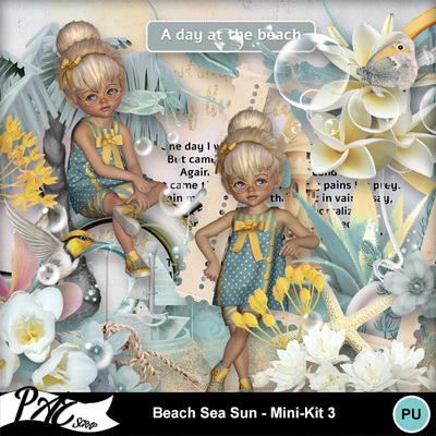 Patsscrap_beach_sea_sun_pv_mini_kit3