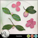 Helly_camellias_preview_small