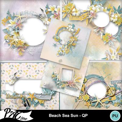 Patsscrap_beach_sea_sun_pv_qp