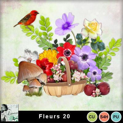 Louisel_cu_fleurs20_preview