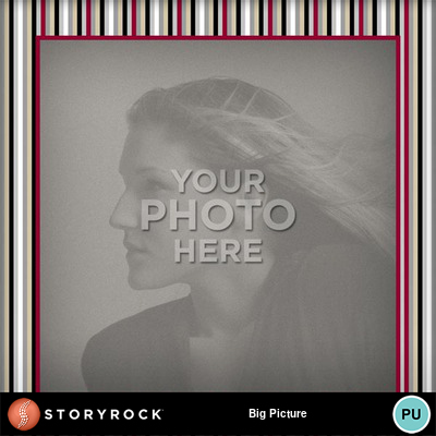 Big_picture-005