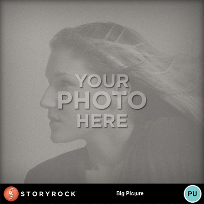 Big_picture-011