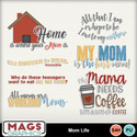 Mgx_mm_momlife_wa_small