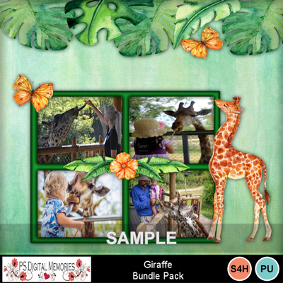 Giraffe_sample_3