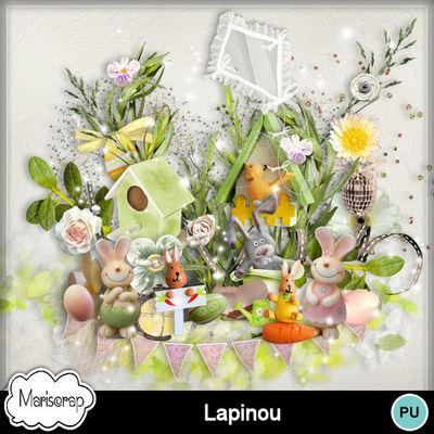 Msp_lapinou_pv