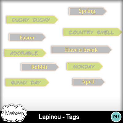 Msp_lapinou_pvtags