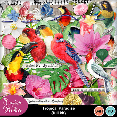 Tropical_paradise_bird_el