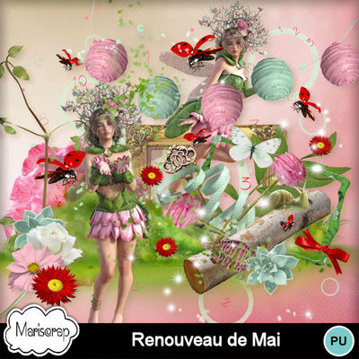 Msp_renouveau_de_mai_pvmms