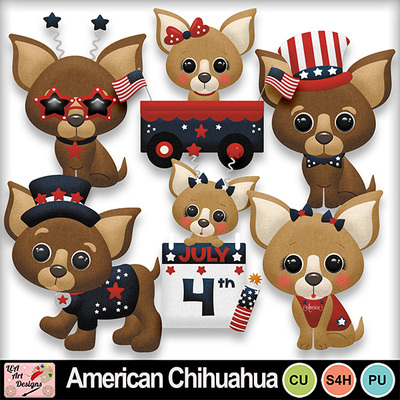 American_chihuahua_preview