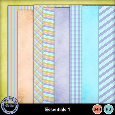 Essentials1__2_