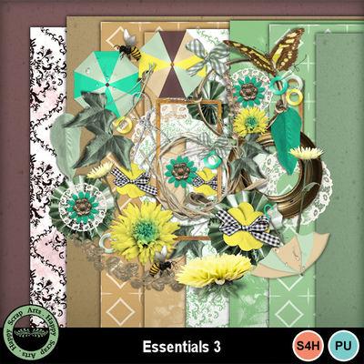 Essentials3__1_