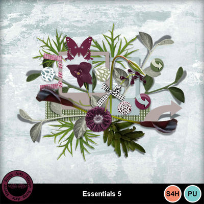 Essentials5__1_