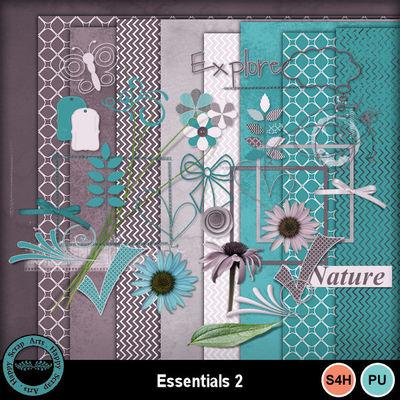 Essentials2__1_