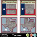 Texas_small