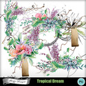 Pv_florju_tropicaldream_emb_small