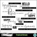 Pv_florju_tropicaldream_wa_small