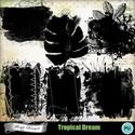 Pv_florju_tropicaldream_masks_small