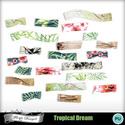 Pv_florju_tropicaldream_tape_small