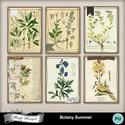 Pv_florju_botanysummer_card_small