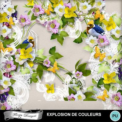 Florju_pv_explosiondecouleur_cluster3